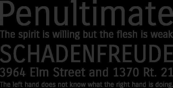 Carrois Gothic Font Phrases