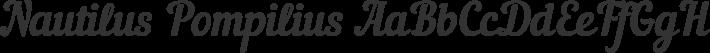 Nautilus Pompilius font family by Punk You Brands