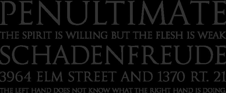 Goudy Trajan Regular Font Phrases