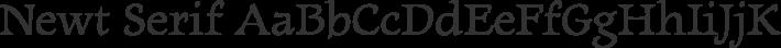 Newt Serif font family by Looseleaf Fonts