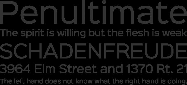 Sinkin Sans Font Phrases