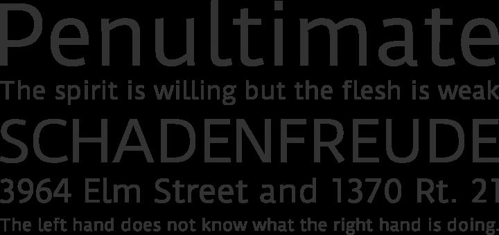 Duru Sans Font Phrases