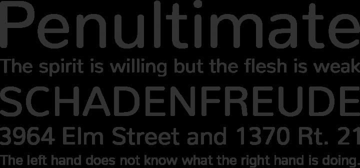 Nunito Font Phrases