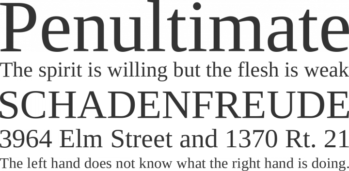 Liberation Serif Font Phrases