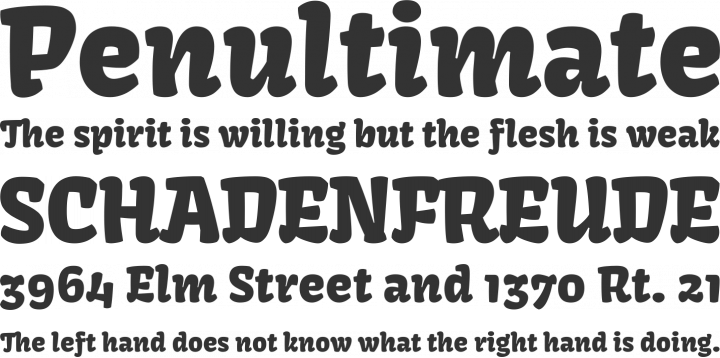 Kavoon Font Phrases