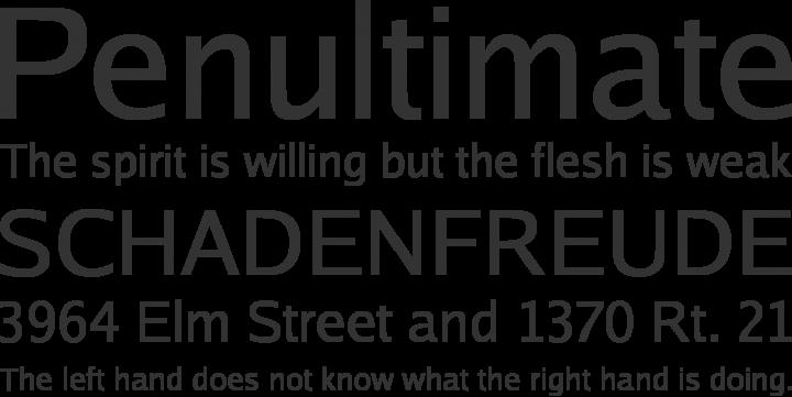 Luxi Sans Font Phrases
