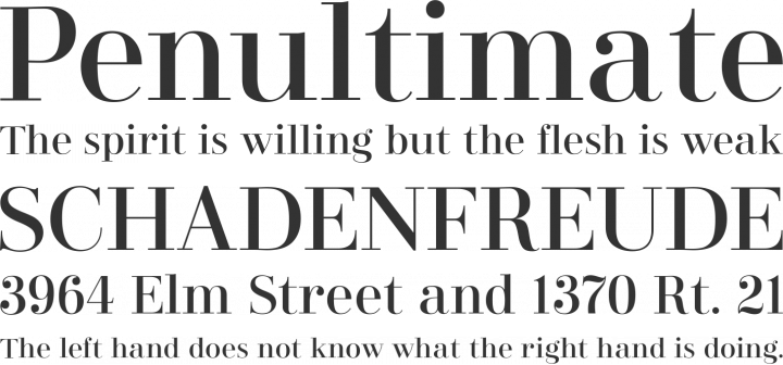 Didonesque Font Phrases