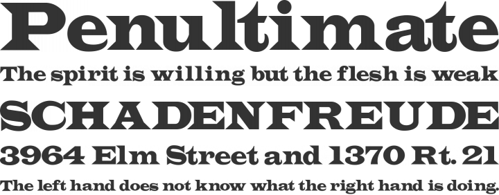 Indubitably Font Phrases