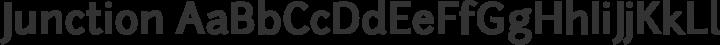 Junction Bold free font