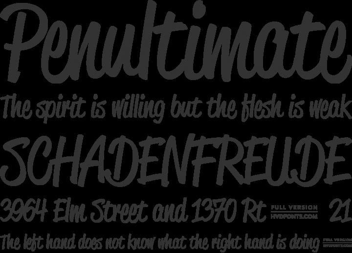 Reklame Script Font Phrases