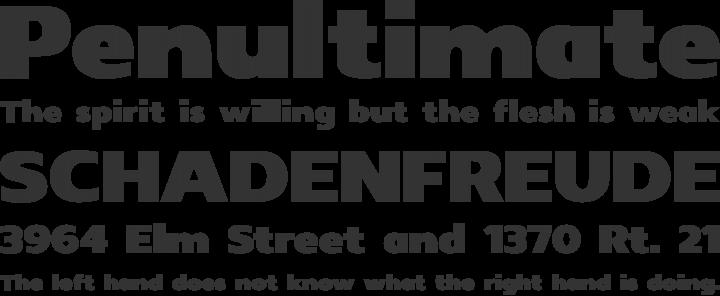 Insolent Font Phrases